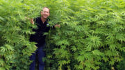 Hemp Foods Australia's Paul Benhaim