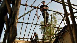 Rebuilding Nepal with hemp