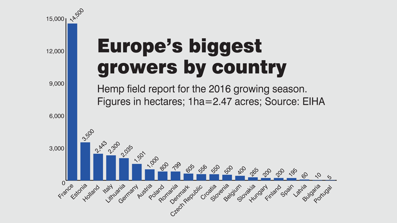 Top Euro hemp growing nations