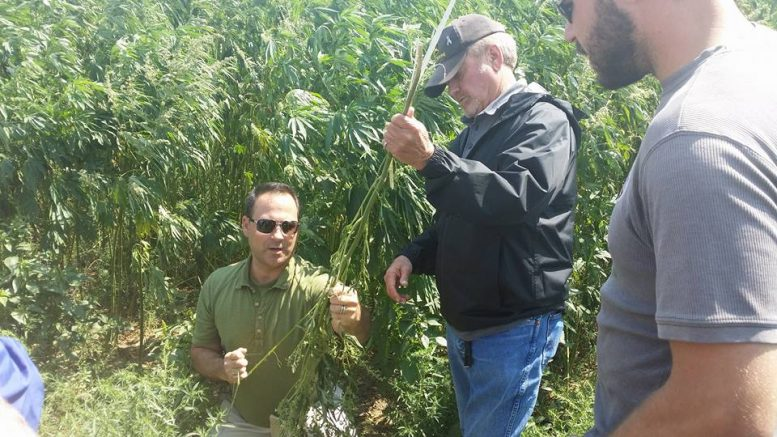 Derek Cross, hemp educator and entrepreneur
