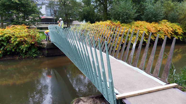 The 'biobridge' is located on the campus of Eindhoven University of Technology