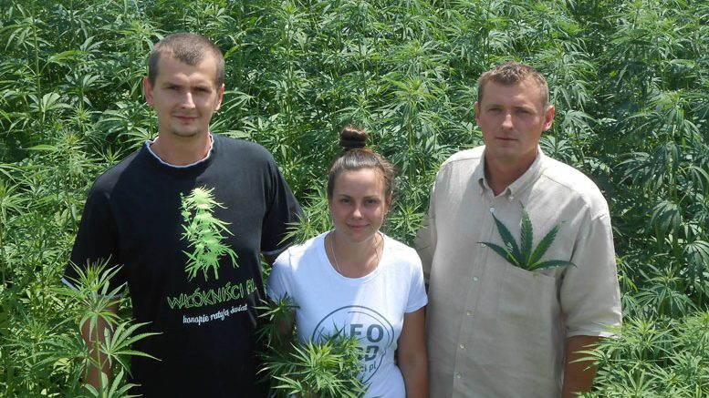 Daniel Bajas, Natacha Leban and Karol Bajas of Good Foods have built a hemp business model close to the source.