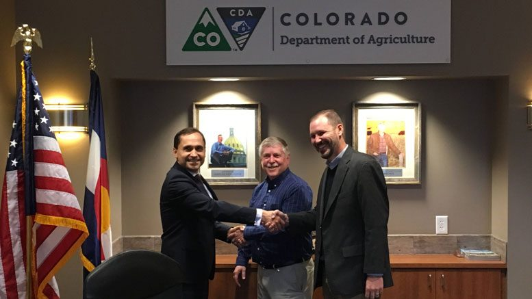 Colorado Poland hemp seed deal