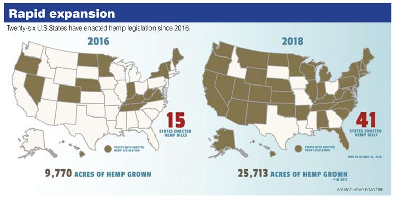 Hemp grown in U.S.