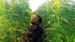 Portugal hemp entrepreneur