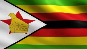 German, Swiss, Canadian companies get licenses in Zimbabwe