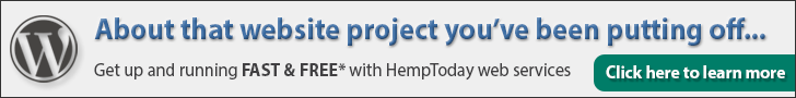 WordPress web design services by HempToday