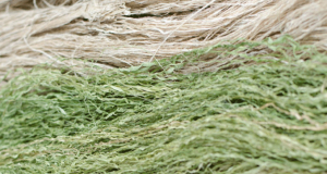 Canadian company raises $7 million, will develop fiber factory in Europe