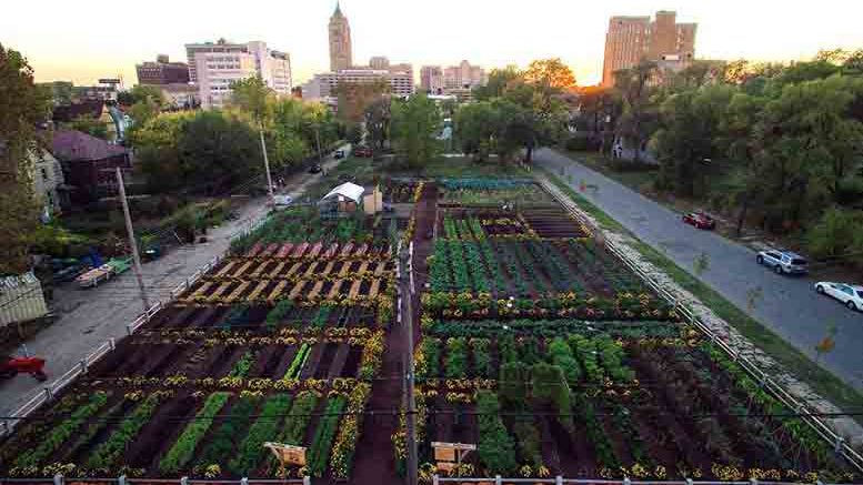 Detroit is already home to nearly 1,400 community gardens and farms.