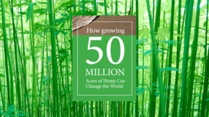 Tech-driven processing critical to advancing the industrial hemp revolution
