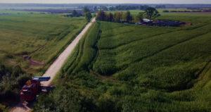 Amendments to Lithuania's hemp law could spark €100 million market